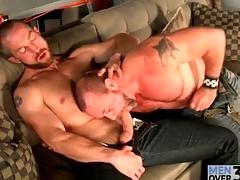 Bears kissing and sucking dick on hammer away divan