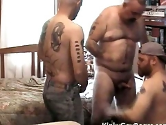 Chubby daddy bear fucks a handful of tattooed studs